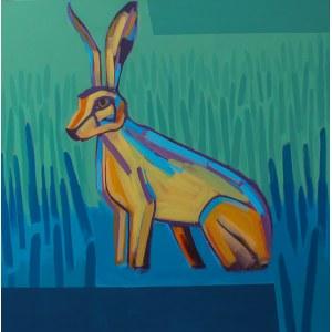 Dorota Zuber, Australian Rabbit, 2017