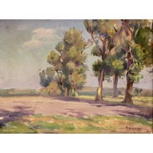 Teodor Ziomek (1874 Skierniewice - 1937 Warszawa), Pejzaż