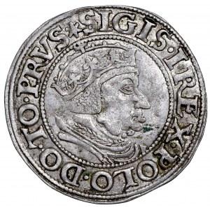 Zygmunt I Stary, Grosz 1537 Gdańsk - PRVS