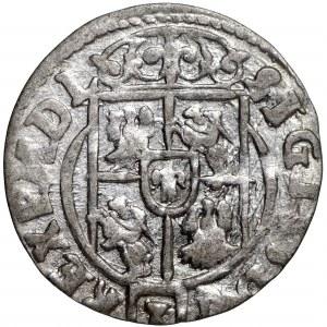 Zygmunt III Waza, Półtorak 1624 Bydgoszcz - krzyżyki na rewersie