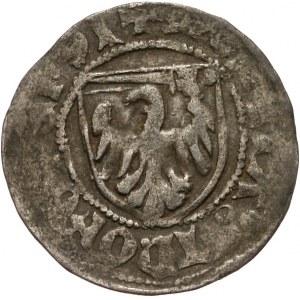 Kazimierz IV Jagiellończyk 1446-1492, szeląg miejski, Toruń