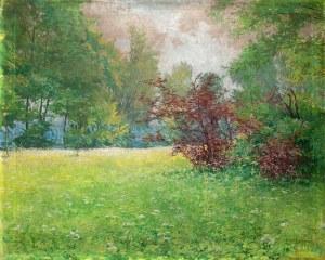 Teodor Ziomek (1874 Skierniewice-1937 Warszawa)Wiosenna łąka