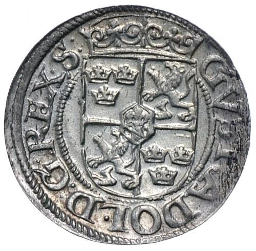 Szwedzka okupacja, półtorak 1623, Ryga, Gustaw II Adolf, wyśmienity.