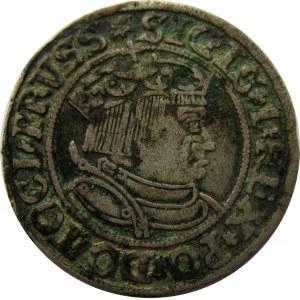 Zygmunt I Stary, 1 grosz 1534, Toruń