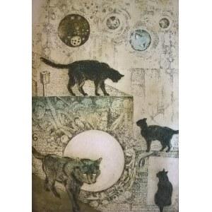Edyta Purzycka, Kocie labirynty, 2017