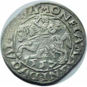 Zygmunt II August, Półgrosz Wilno 1557 - Behm