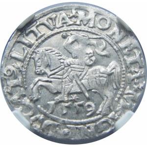 Zygmunt II August, Półgrosz Wilno 1559