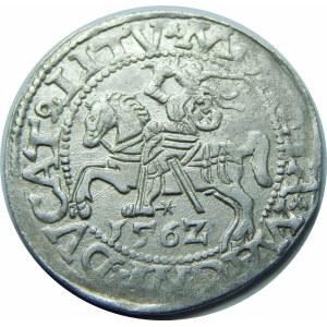 Zygmunt II August, Półgrosz Wilno 1562