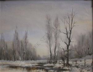 Engelbert Bytomski(XX w.), Pejzaż zimowy ze strugą(1987)