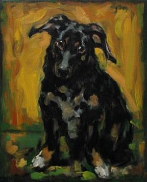 Sławomir J. Siciński, Portret małego psa (2019)