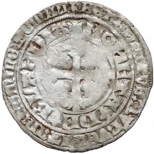 Niderlandy, Willem V (1345-1389), Dwugrosz
