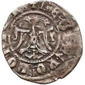 Kazimierz III Wielki, Półgrosz Kraków (bez daty) - duże pop.