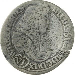 6 krajcarów, 1678, Juliusz Zygmunt 1664-1683, Bierutów, bardzo rzadka moneta