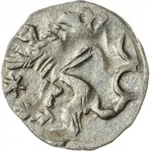 halerz, Půta z Častolowic 1422-1434, Hrabstwo Kłodzkie, R3