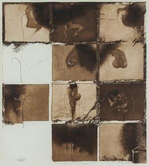 Ladislav Kuklík, Žena v pohybu, 1988