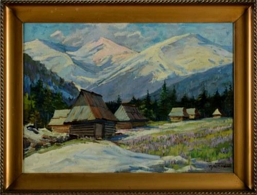 Michał Stańko (1901 Sosnowiec - 1969 Zakopane), Krokusy w Dolinie Chochołowskiej
