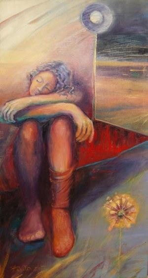 Iwona Duda, Dziewczyna w czerwonym pudełku, 2013