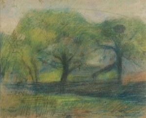 ARTUR MARKOWICZ (1872-1934), Park - Pejzaż z drzewami