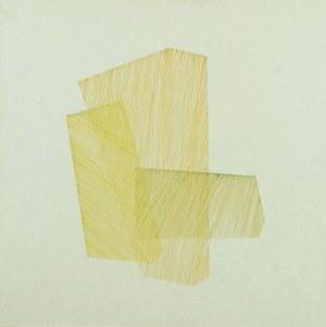 Anna SZPRYNGER (ur. 1982), Bez tytułu nr 22, 2010