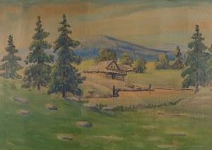 Ludwik Remer (1884–1942), Szałasy na hali