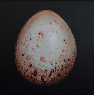 Szymon Kurpiewski, Egg #5, 2019