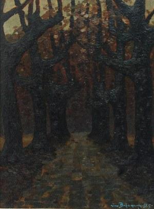 Jan BOHUSZEWICZ (1878-1935), Listopad, 1929