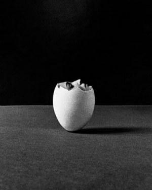 Ryszard Horowitz, Nedda'69, 1969 r