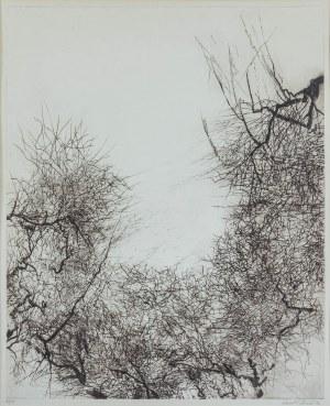 Kamila Ženatá, bez tytułu, 1990