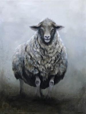 Klaudia Choma, Owca, 2019