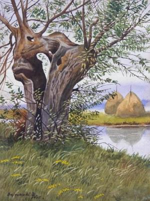 Zygmunt Bujnowski (1895 Kutyłowo-Perysie – 1927 Tykocin), Pejzaż podlaski, 1925 r.