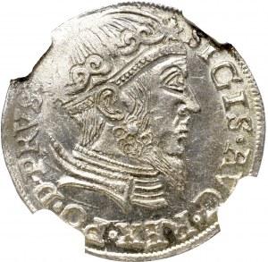 Sigismund II Augustus, 3 Groschen 1557, Danzig - NGC MS64