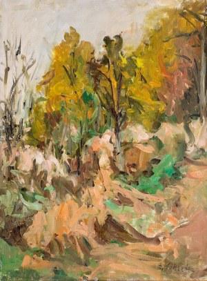 Zygmunt Schreter (1886 Łódź - 1977 Francja), Krajobraz leśny