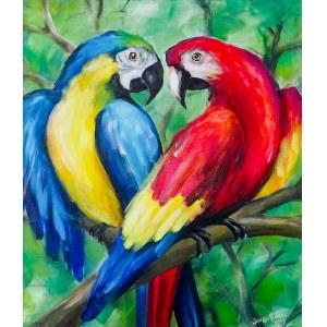 José Angel Hill, Parrots