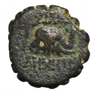Królestwo Seleukidów, Demetriusz I Soter, Brąz - słoń/głowa konia