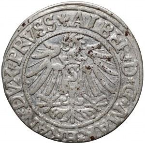 Prusy Książęce, grosz 1538 Królewiec
