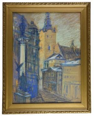 Erno ERB (1878-1943), Lwów - Widok na Katedrę Łacińską
