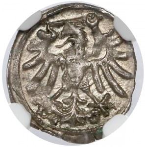 Zygmunt I Stary, Denar Gdańsk 1546