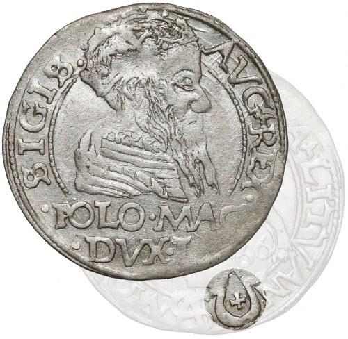 Zygmunt II August, Grosz na stopę polską 1566, Tykocin - JASTRZĘBIEC