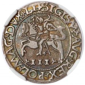 Zygmunt II August, Trojak Tykocin 1565 - Szyderczy - LI